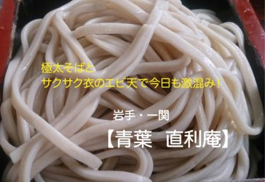 【青葉 直利庵】極太麺の蕎麦屋はホスピタリティ皆無でも大人気!