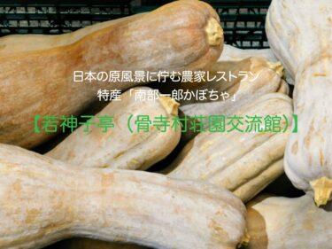 【若神子亭】日本の原風景と糖度18度以上の特産品「南部一郎かぼちゃ」